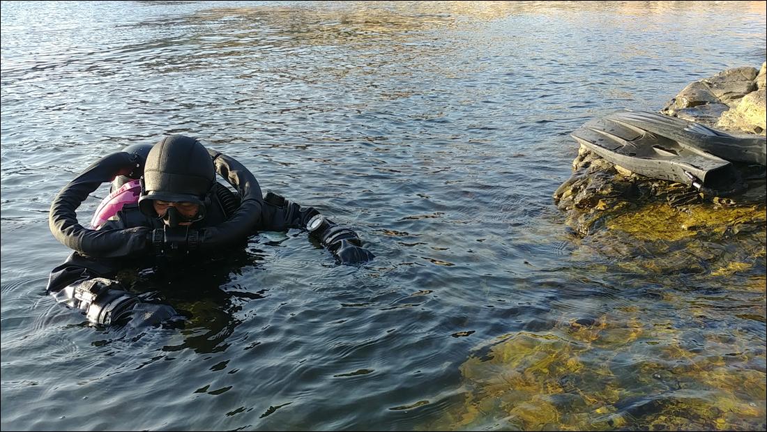 pSCR Diver